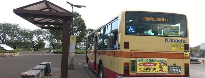 大倉 バス停 is one of 丹沢・大山.