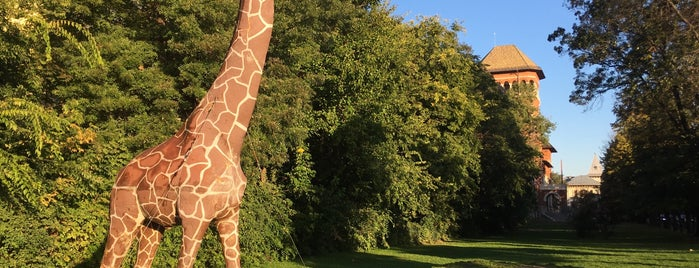 Girafa is one of Best of Bucharest.