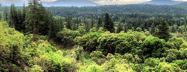 Lassen National Forest is one of National Recreation Areas.