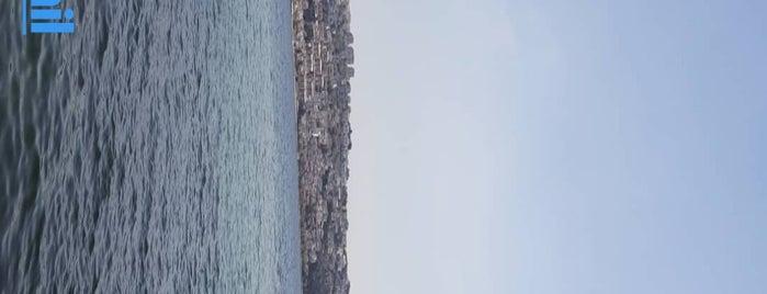 Büyükçekmece Sahili is one of Orte, die Veysel gefallen.