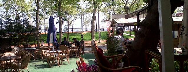Viran Cafe is one of Locais curtidos por Cem.