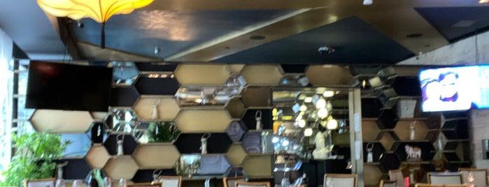 Royal India - Tandoor & Bar is one of Mexico City.