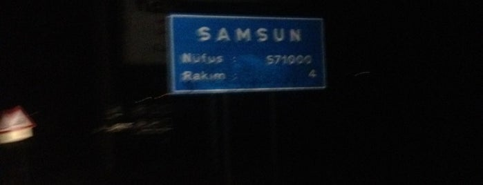 Samsun is one of Locais curtidos por Reyhan.