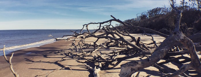 Big Talbot Island State Park is one of Jax.