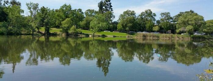 Ellis Lake Park is one of Andrew'in Beğendiği Mekanlar.