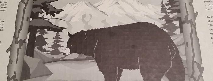 Black Bear Diner is one of สถานที่ที่ Andrew ถูกใจ.