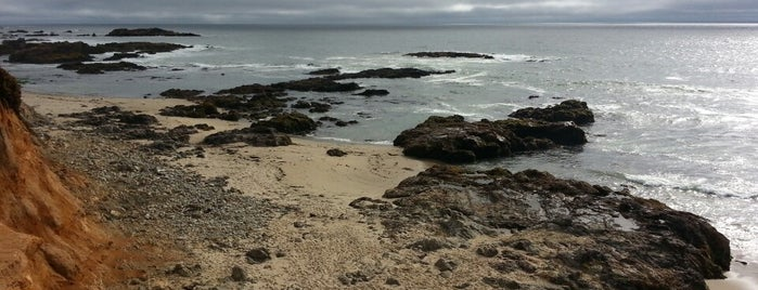 Pescadero State Beach is one of สถานที่ที่ Andrew ถูกใจ.