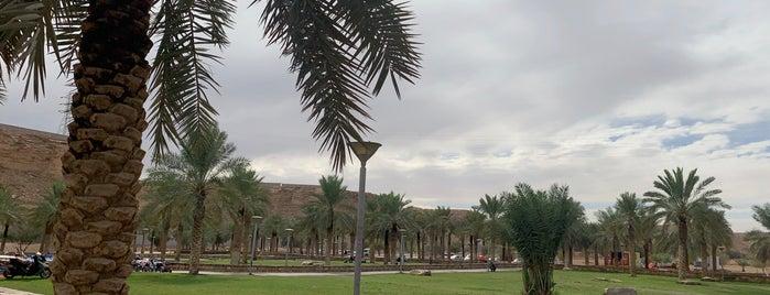 Hanifa Valley is one of Riyadh.
