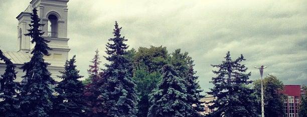 Площадь Ленина is one of Константин «Kest»: сохраненные места.
