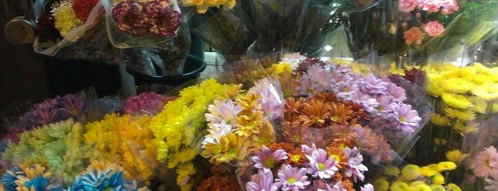 P&K Food Market is one of Aniruddha'nın Beğendiği Mekanlar.