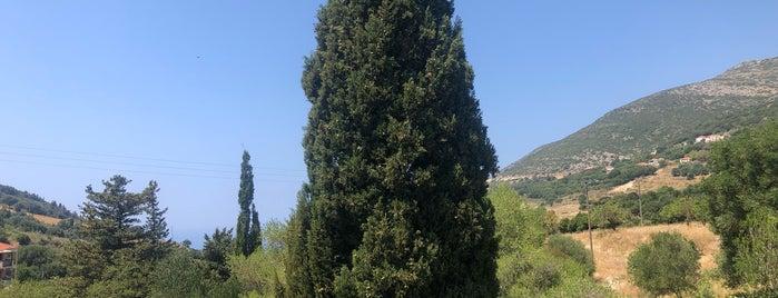 Αλέξανδρος is one of Kefalonia.