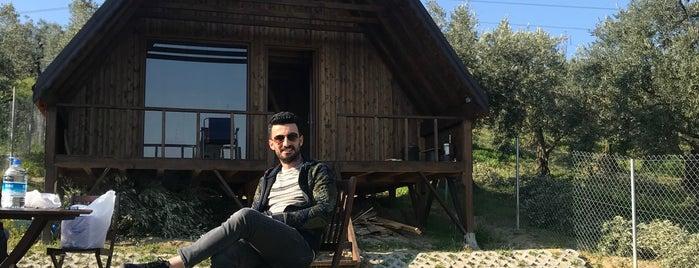 Çağlayan is one of Locais salvos de Etna Bistro.