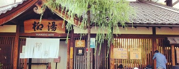 柳湯 is one of 訪れた温泉施設.