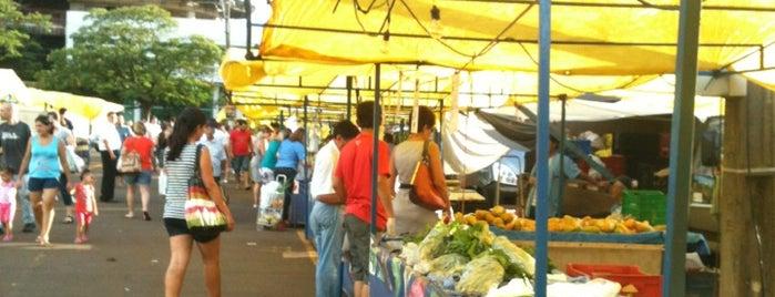Feira do Produtor is one of สถานที่ที่ Mr. ถูกใจ.