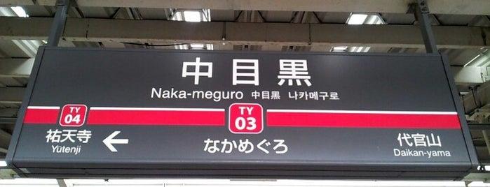 Toyoko Line Naka-meguro Station (TY03) is one of Tokyo - Yokohama train stations.