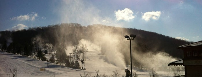 Liberty Mountain Resort is one of United States.