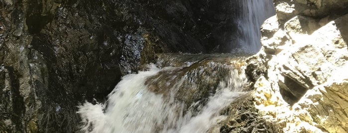 Zapata Falls is one of Denver to Taos roadtrip!.