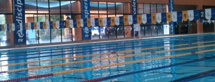 Alberca olímpica La Loma is one of Disfrutables!!.