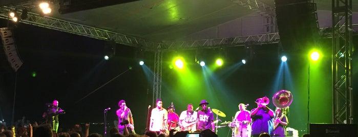 Fenerbahçe Caz Festivali is one of Aykutさんのお気に入りスポット.