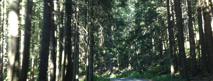 Denny Creek Campground is one of Camping/Hiking in Western Washington.