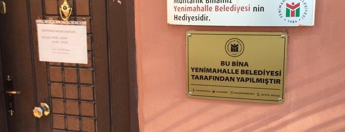 Yenibatı Mahallesi Muhtarlığı is one of mehmetniyazi'nin Beğendiği Mekanlar.