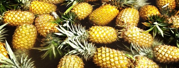 Maui Pineapple Tours is one of Things to do in Maui.