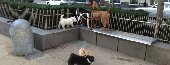 North End Ave Dog Run is one of Dog Friendly.
