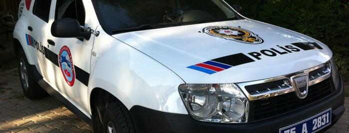 Motosikletli Polis Timler Amirliği (Yunuslar) is one of ;).