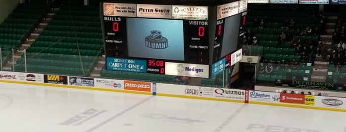 Yardmen Arena is one of OHL Arenas.