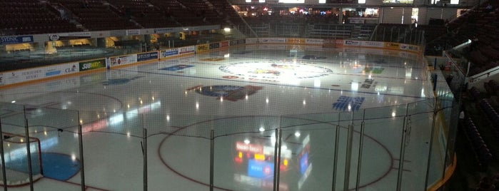 Barrie Molson Centre (BMC) is one of OHL Arenas.