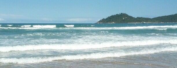 Praia do Campeche is one of Florianópolis.