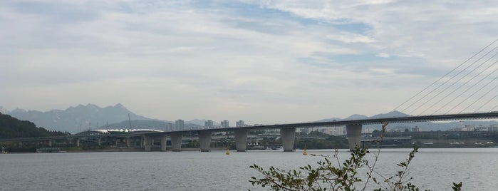 안양천 합수부 is one of Tempat yang Disukai Meri.