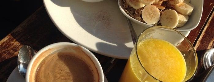 Cafe 4 Gatos is one of Granada.