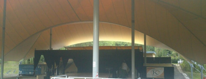 Amfiteatr w Parku Sowińskiego is one of faenza.