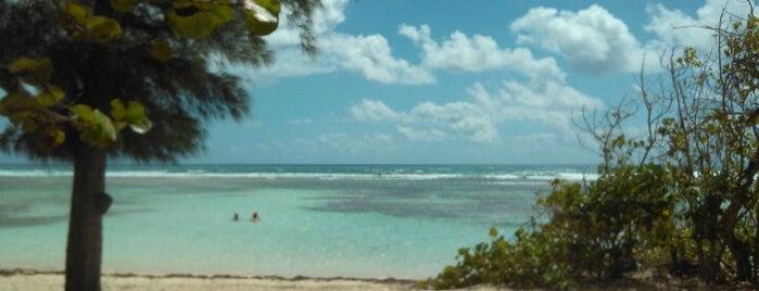 Plage de Bois Jolan is one of Martinique & Guadeloupe.