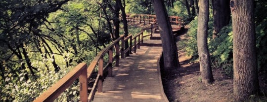 Природный парк «Долина реки Сходня в Куркино» is one of Posti che sono piaciuti a Svetlana.
