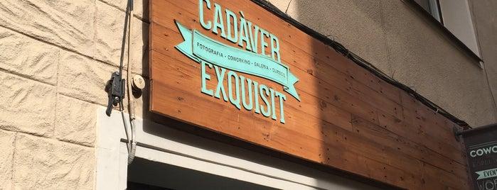 Cadàver Exquisit is one of BCN.