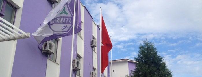 Orduspor Kulübü is one of Futbol.