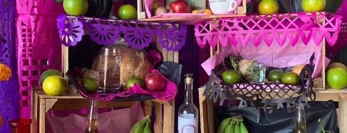 """Garnachas """"La Guera"""" is one of Oaxaca."""