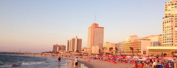 Frishman Beach is one of Shabbat Shalom.