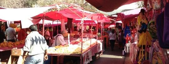 Mercado de Las Alamedas is one of Omar (Chapo) 님이 좋아한 장소.