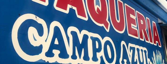Campo Azul is one of Lugares favoritos de Schmidt.
