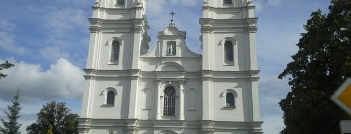 Daugavpils Vissv. Jaunavas Marijas Bezvainīgās Ieņemšanas Romas katoļu baznīca is one of D-pils is LoVe.
