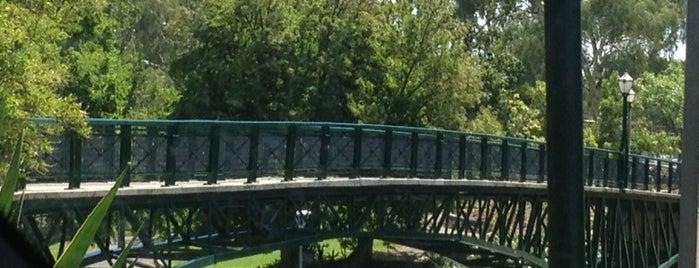 Adelaide University Footbridge is one of Around The World: SW Pacific.