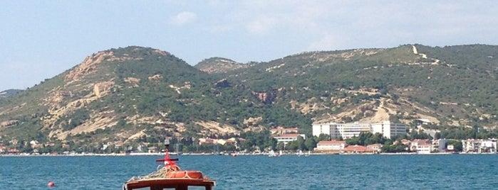 Foça Büyük Deniz is one of Tempat yang Disukai Kökten.