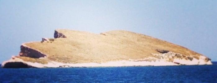 Atatürk Adası is one of Gülay : понравившиеся места.