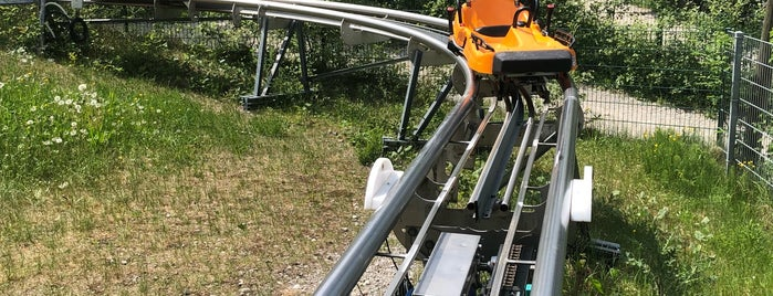 "Alpine Coaster ""Blomberg Blitz"" is one of Germany."