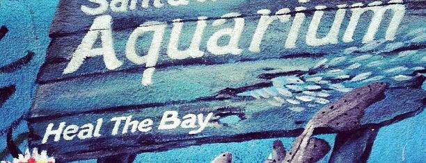 Santa Monica Pier Aquarium is one of West Coast 2015.