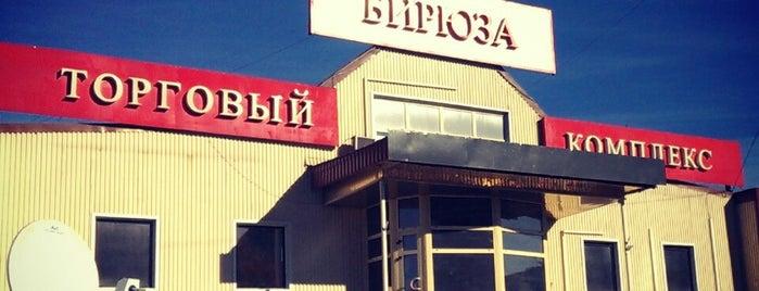 ТЦ Бирюза is one of Orte, die Олим gefallen.