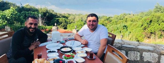 Melsa Cafe&Restaurant is one of Muğla.